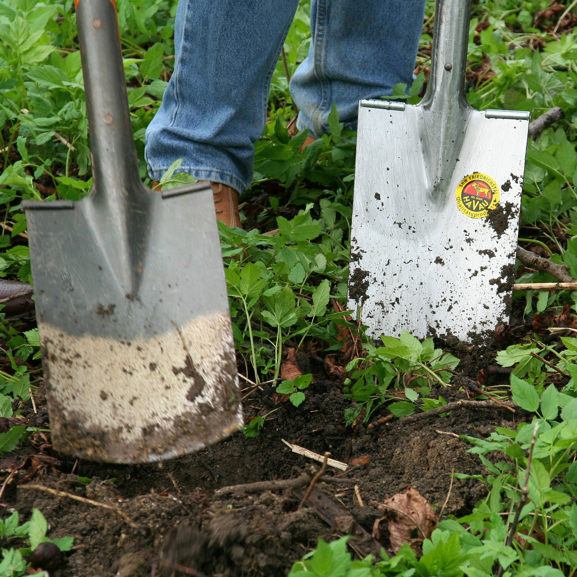 Roots Gardening Services Help Care